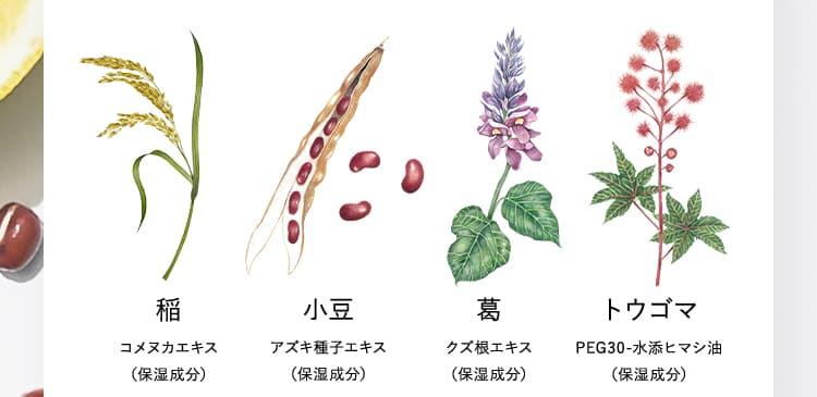 稲 小豆 葛 トウゴマ